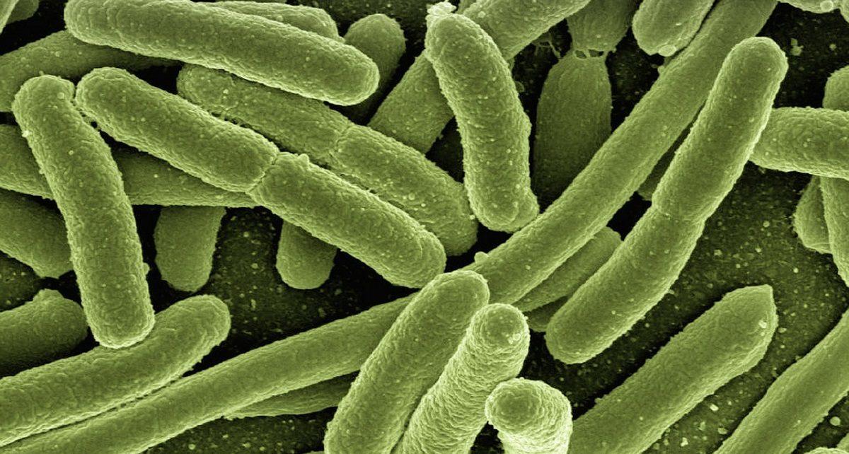 infezioni resistenti